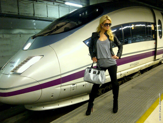 Paris Hilton Handbags & Accessories Timeless Chihuahua